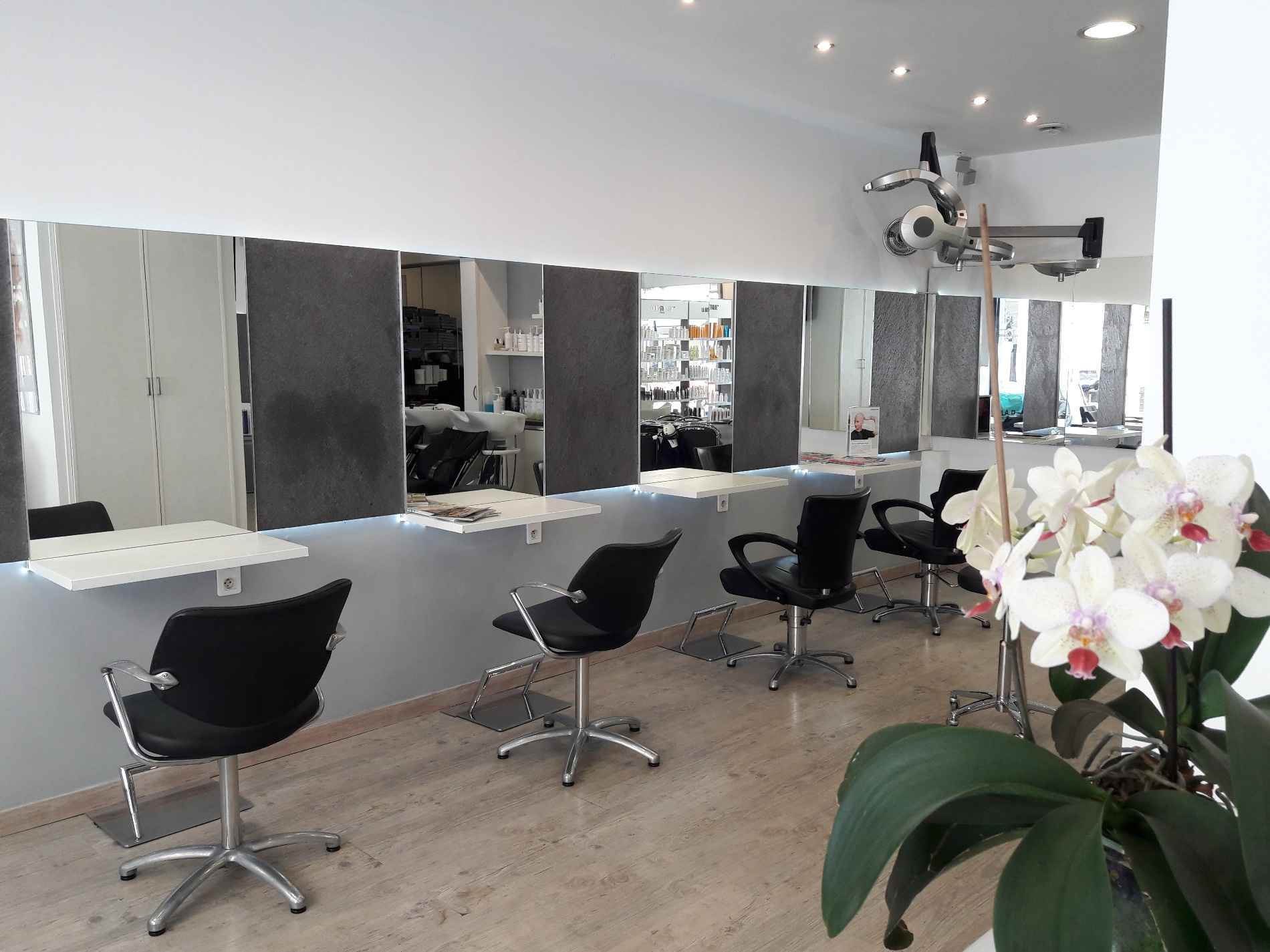 vente immobilier professionnel nice centre exclusivite